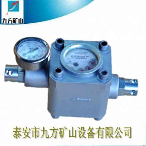 朔州市ZGS-6煤层高压注水表促销